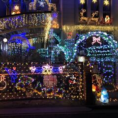 八王子/イルミネーション/クリスマス/光る/照明 イルミネーション🎄 見つけた途端に「わぁ…