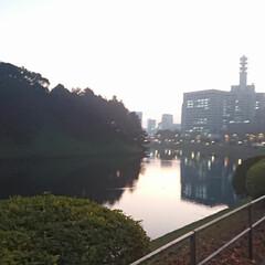 おしゃべり/竹橋/気象庁/消防庁/大手町/日比谷/... 沖縄から所用で東京に来た友人が、皇居周り…