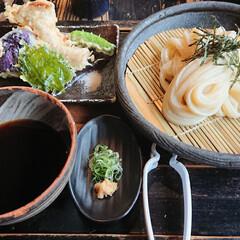 汁は結構濃いね/京都のうどん 今日は朝から京都へ移動し、うどん屋さんへ…