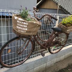 塀/スプレーペンキ/自転車/ステンシル/ドンゴロス/DIY/... 子供の通学用だった自転車、ずーっと放置状…