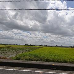 夏の空 台風がくる前の空… 雲の流れが早かったぁ…(2枚目)