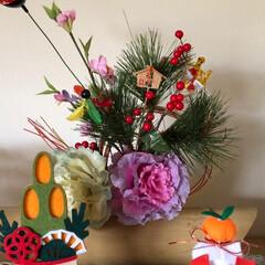 お正月飾り/観葉植物/2018/冬/ペット/犬/... やっと 適当なお掃除が終わり お正月ve…