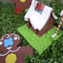 懐かしい/クッキーゲーム/ロンパールーム/なつかしい ロンパールームという番組のクッキーゲーム…