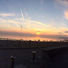 海岸/夕焼け/飛行機曇 飛行機曇ラッシュでした(2枚目)