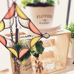 スタジオクリップ/ワッツ/セリア/ダイソー/観葉植物 窓辺にグリーン🍀と好きな雑貨を飾ってます…