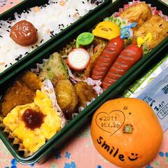 永谷園 ピンクの梅ごましお 45g(ふりかけ)を使ったクチコミ「    12/26(木) 主人弁当🍱  …」