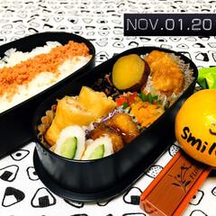 鮭フレーク/業務スーパー/主人弁当/ダイソー/100均/お弁当/...       11/1(金) 主人弁当🍱 …