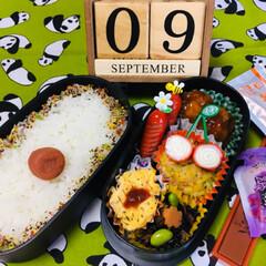 ◆オリヒロ ぷるんと蒟蒻ゼリーパウチ グレープ 20g×6個(ダイエットお菓子)を使ったクチコミ「               9/9(月…」