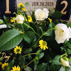 フォロー大歓迎/至福の時間/おうち時間/花のある暮らし/salut!/ガーデン雑貨/...        2020.6.20(土) …