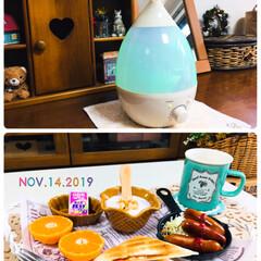 afternoon tea/加湿器/朝食/キャンドゥ/セリア/100均/...              2019.11…