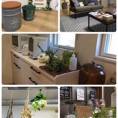 ドライフラワー/観葉植物/フォロー大歓迎/LIMIAインテリア部/キッチン/暮らし/...   息子の🏠寄り🌱観葉植物と冷凍食品取り…