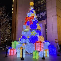 フォロー大歓迎/リミとも部/娘/ケーキ/イルミネーション/クリスマスツリー/...  娘のクリスマス🎄✨🎁⭐️🎀 素敵なクリ…