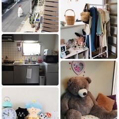 娘部屋/キッチン/住まい/掃除/暮らし/フォロー大歓迎/...     👩🏻🦰娘が出勤してから掃除・洗…