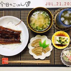 土用丑の日/S&B七味唐からし/フォロー大歓迎/キッチン雑貨/ランチョンマット/鰻丼/...         7/21(火) 夕食  …