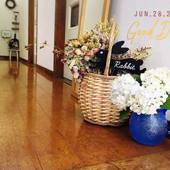 フォロー大歓迎/花のある暮らし/ドライフラワー/紫陽花/セリア/玄関/...        2020.6.28(日) …