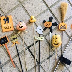 フォロー大歓迎/リミとも部/暮らし/KOMERI/ガーデンピック/halloween/...        2020.9.13(日) …
