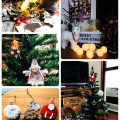 白トナカイ/クリスマス雑貨/クリスマスツリー/レターボード/LEDツリー/次のコンテストはコレだ!/...      2019.11.16(土) ☔…