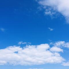 青空/風景/フォロー大歓迎/マーコット/太郎納豆/至福の時間/...        5/7(木) 🏡おうちラン…(2枚目)