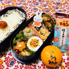 永谷園 ピンクの梅ごましお 45g(ふりかけ)を使ったクチコミ「      2/3(月) 主人弁当🍱  …」