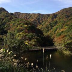 フォロー大歓迎/リミとも部/風景/谷根ダム/紅葉/おでかけ 深まる秋🍁