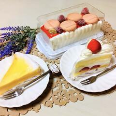 結婚記念日/スイーツ/ケーキ/デザートアイスケーキ/シャトレーゼ/令和の一枚/...                5/22(…