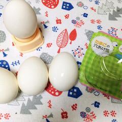 卵の穴あけ器/ゆで卵作り/フォロー大歓迎   ゆで卵の殻が上手く剥けなくてイライラ…