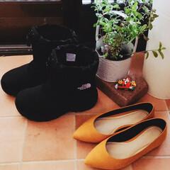 クリスマスプレゼント/ブーツ/冬/ファッション Xmas🎁のブーツ今年は暖冬で雪が降らず…
