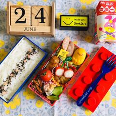 LEGO弁当箱/昼食/森永マミーL/紀文 たまごかまぼこ ぐでたま/シルク/3coins/...             6/24(月) …