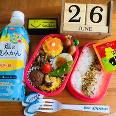 タナカのふりかけ うんこ漢字ドリルカレーふりかけ6P 12g×3袋 | sanrio(ふりかけ)を使ったクチコミ「            6/26(水) …」
