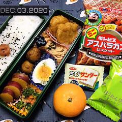 フォロー大歓迎/リミとも部/暮らし/キッチン雑貨/味梅/みかん/...       12/3(木) 主人弁当🍱 …