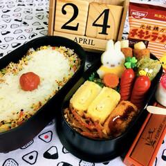日清食品 チキンラーメンMini 10685 3食パック 1セット(インスタントラーメン)を使ったクチコミ「      4/24(水) 主人弁当🍱 …」