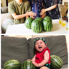 夏/フォロー大歓迎/スイカ/孫  上段2019.夏お嫁さんの🤰お腹がぱん…