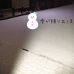 フォロー大歓迎/雪/初雪/キッチン雑貨/ランチョンマット/100均/...         12/14(月) 夕食 …(2枚目)