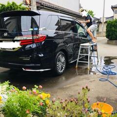 庭/洗車/令和元年フォト投稿キャンペーン/フォロー大歓迎/暮らし/LIMIA           6/2(日) 洗車🚙…