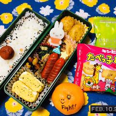 永谷園 ピンクの梅ごましお 45g(ふりかけ)を使ったクチコミ「        2/10(月) 主人弁当…」