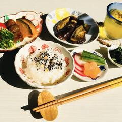 永谷園 ピンクの梅ごましお 45g(ふりかけ)を使ったクチコミ「    2/26(火) 昼食   🍱と昨…」(1枚目)