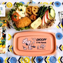 カゴメ 野菜生活100 デコポンミックス 195ml 1箱 野菜ジュース(野菜ジュース)を使ったクチコミ「       3/26(木) 自分弁当🍱…」
