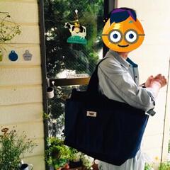 ◆オリヒロ ぷるんと蒟蒻ゼリーパウチ グレープ 20g×6個(ダイエットお菓子)を使ったクチコミ「               9/9(月…」(3枚目)