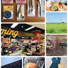 朝食/ワンピース/honeys/有限会社なんぼうパン/バラパン/コーヒーバラパン/...                2019.…