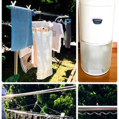 コロナ 衣類乾燥除湿機 除湿量6.3L 10年交換不要フィルター搭載 ホワイト CD-P6317(衣類乾燥機)を使ったクチコミ「 我が家は☀️天気の良い日は南側の庭で洗…」