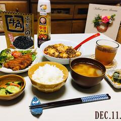 ブルドックソース/中濃ソース 300ml(ウスター、中濃、お好みソース)を使ったクチコミ「        12/11(水) 夕食 …」