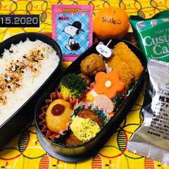 ロッテ カスタードケーキパーティパック 9個(その他スイーツ、洋菓子)を使ったクチコミ「          1/15(水) 主人…」