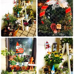 クリスマス/シャンブル/KOMERI/SaIut!/Flying Tiger/ガーデン雑貨/...             2019.12.…
