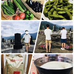 魚沼産コシヒカリ/お墓参り/新鮮野菜/フォロー大歓迎/風景/LIMIA              2019.8.…