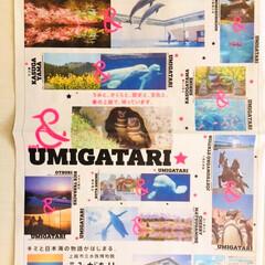 新潟県上越市立水族博物館うみがたり/LIMIAおでかけ部/フォロー大歓迎/おでかけ   🐬新潟県上越市立水族博物館うみがたり…