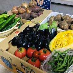 車庫/新鮮野菜/フォロー大歓迎/LIMIA     昨日、お義姉さん一家が義父母 手…