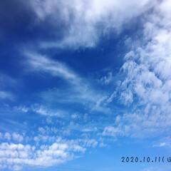 フォロー大歓迎/リミとも部/風景/秋晴れ/雲/空        2020.10.11(日)…