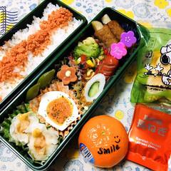 フォロー大歓迎/マーコット/栗山米菓 星たべよ6種の野菜/鮭フレーク/業務スーパー/ピックスさくら/...        4/8(水) 主人弁当🍱 …