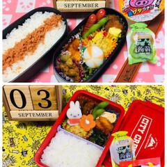 ◆オリヒロ ぷるんと蒟蒻ゼリー パウチ キウイ 20gx6個(ダイエットお菓子)を使ったクチコミ「          9/3(火) 主人弁…」