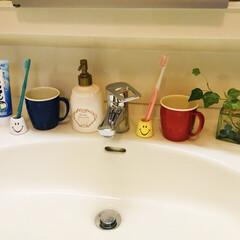 歯ブラシ立て/洗面台/フォロー大歓迎/100均/住まい/掃除/...   子供達が🏠居た時は歯ブラシ4本と歯磨…
